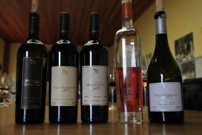Os vinhos degustados.