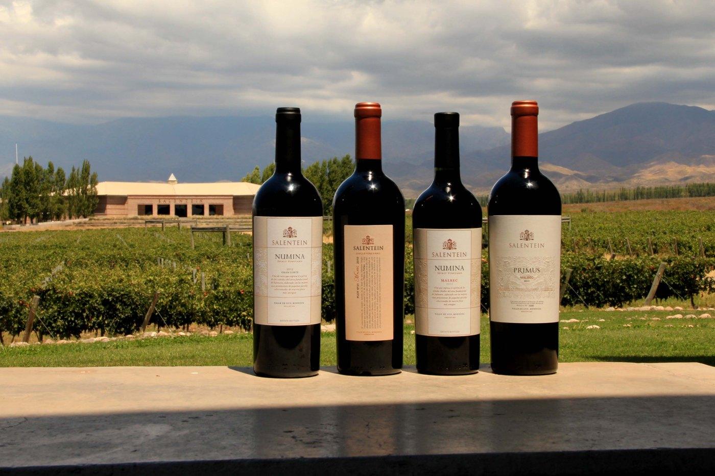 Um passeio por Mendoza – SELO 7 SOMMELIERS – Guia de Vinhos